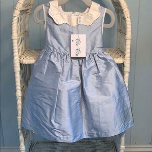 Clo Clo Raw Silk Dress-STUNNING-NWT